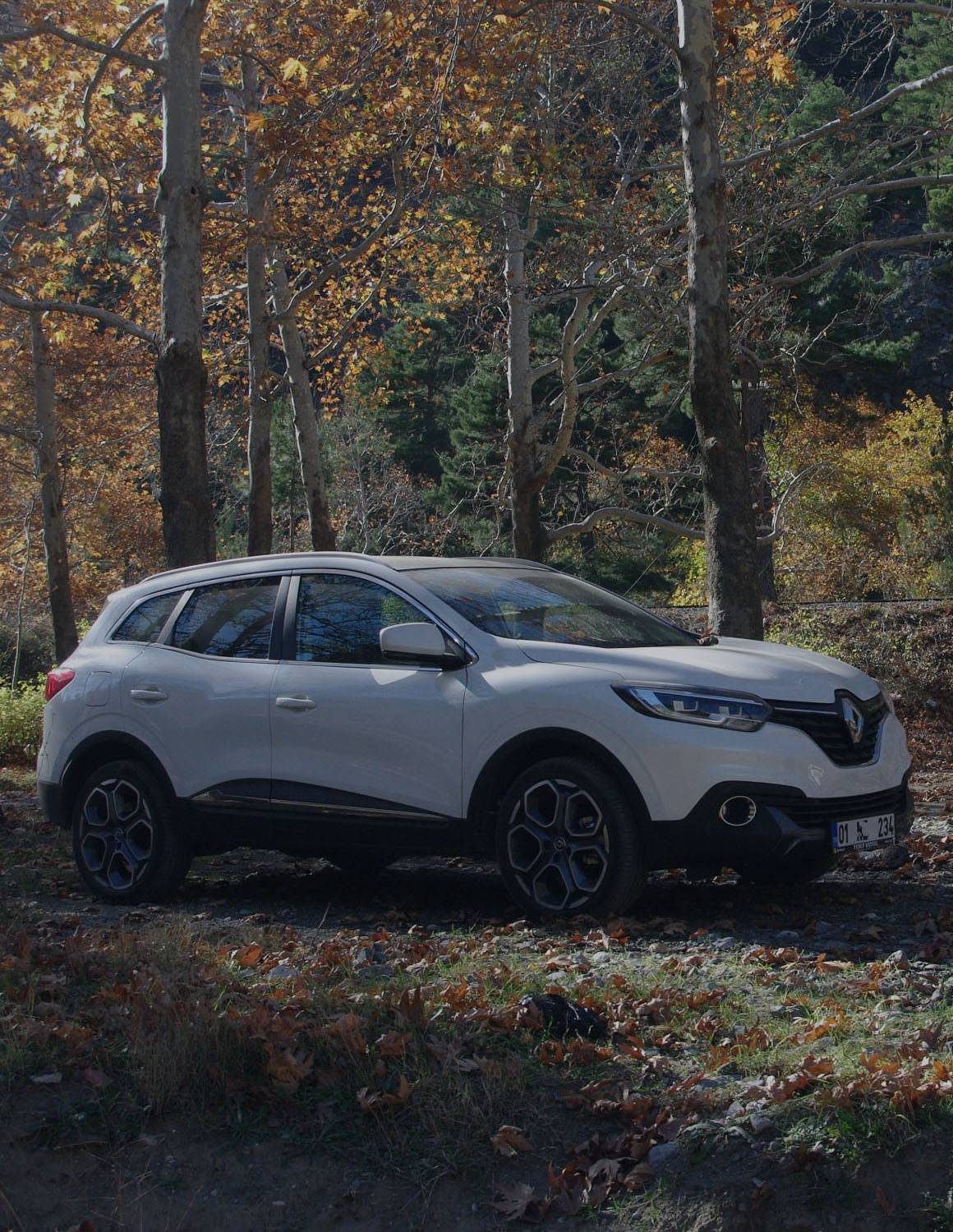 Compare Renault insurance costs for all models